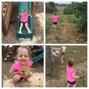 play time on the farm